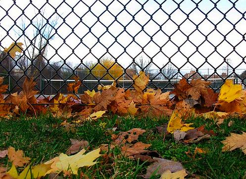 autumn-tennis09